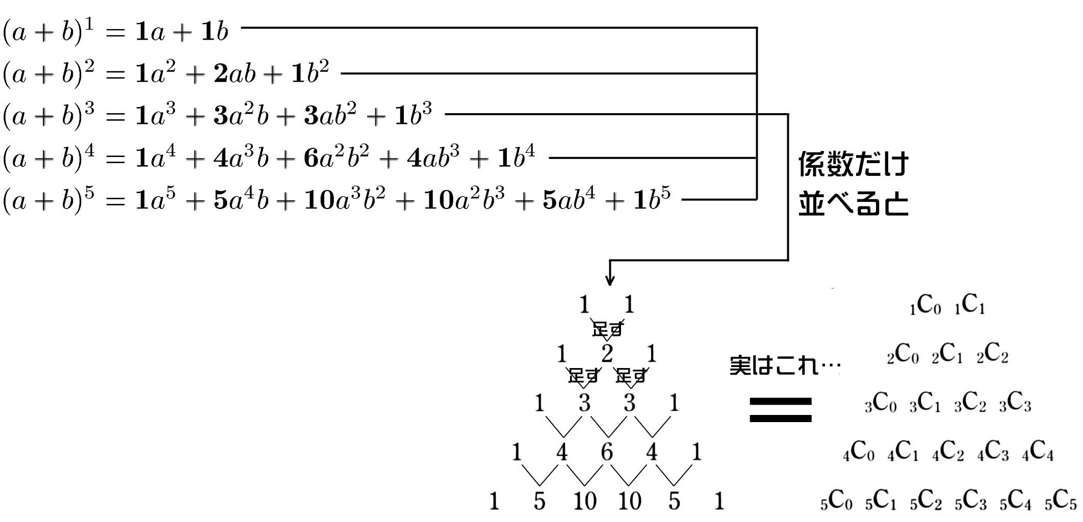 二項定理の意味としくみ【数学まるかじり】